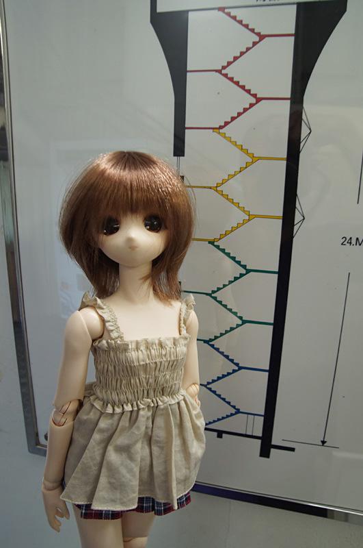 DSC09407.jpg