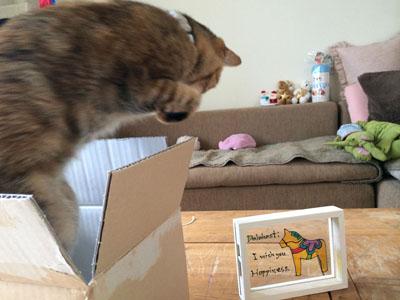 箱からとびでて。。