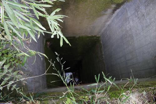 愛岐トンネル群 第11回特別公開・4号-5号トンネル間の暗渠