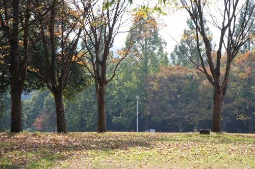 蜻蛉池公園
