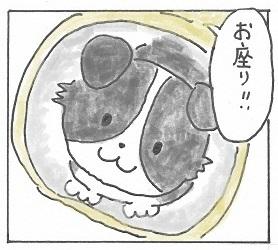 レッスン1
