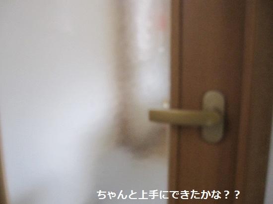 005-2_20130622202552.jpg