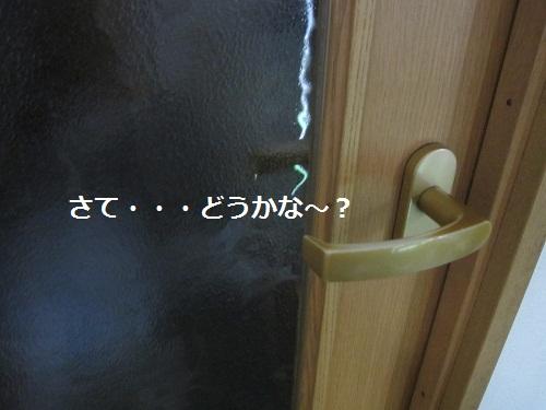 091-2_20130702201740.jpg