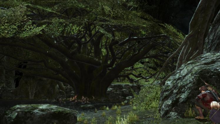 大樹で轟く闇の鼓動2