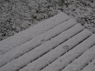 冬到来 (1) (400x300)