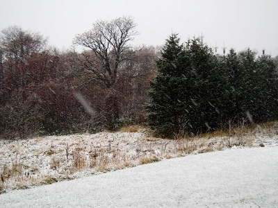冬到来 (400x300)