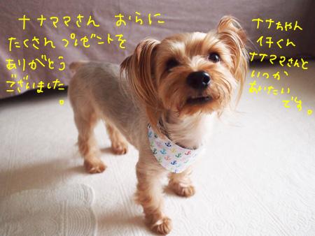 P7170877.jpg