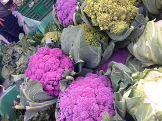 紫ブロッコリー①