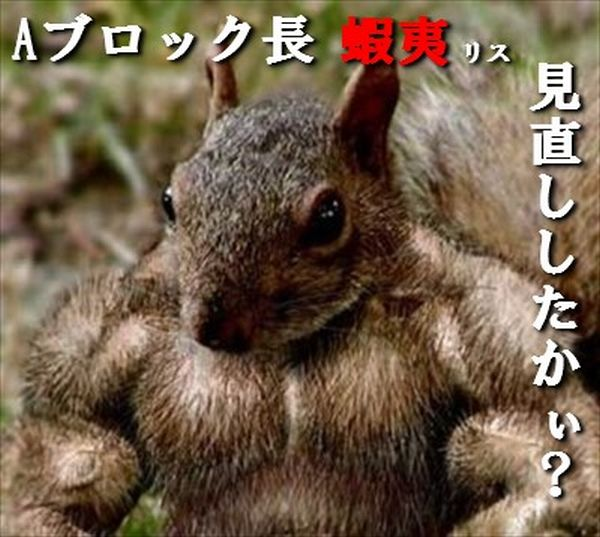 ezo100_thumb.jpg