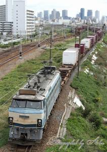 89レ(EF66-24牽引)