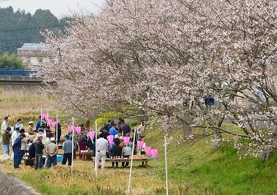 北広島・春 7