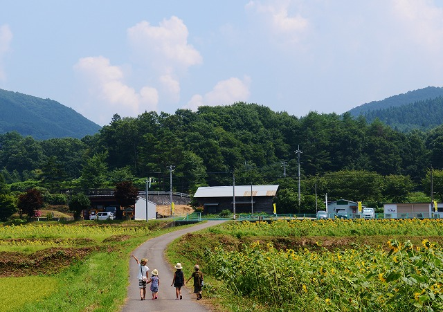 吉和の夏 6