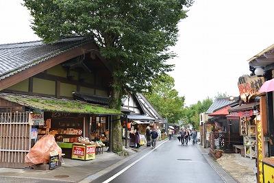 九州の旅11
