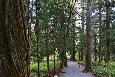 熊野神社6