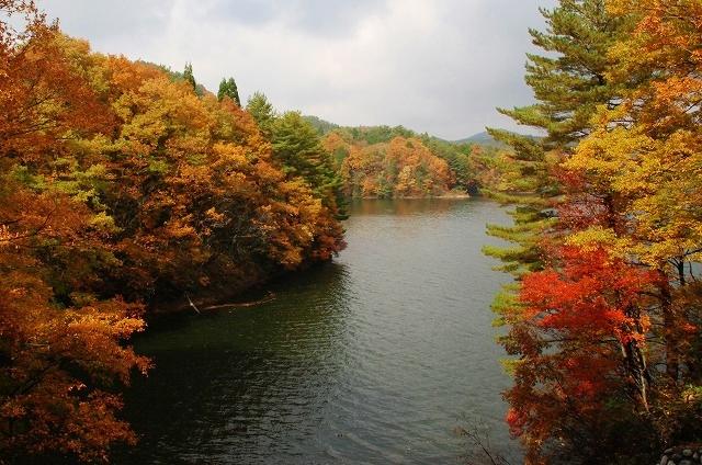 聖湖の秋 1