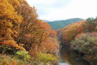 聖湖の秋7