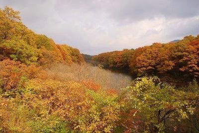 聖湖の秋 11