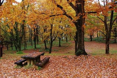 聖湖の秋2
