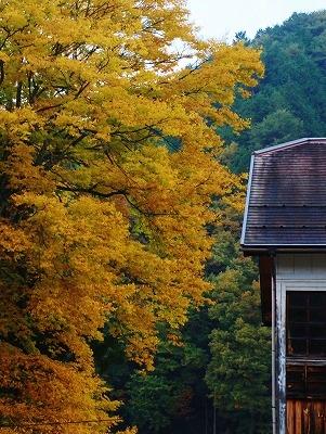 県北の秋8