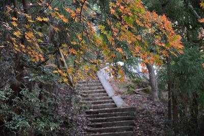宮島歩き 10