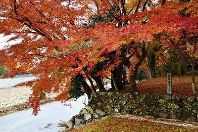 安芸高田の秋 2