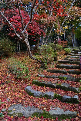 安芸高田の秋 7