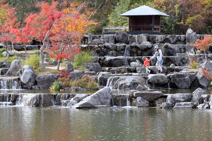 水景園 紅葉3