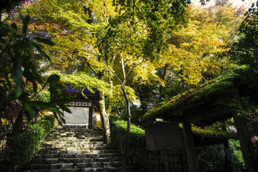 寂光院:茶室庭園入り口と石段