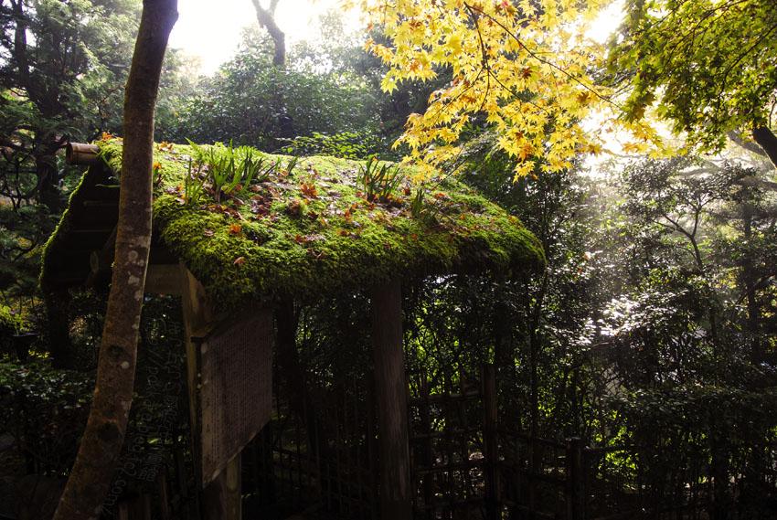 寂光院:茶室庭園入り口