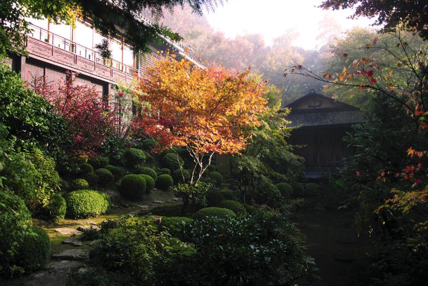 寂光院:朝靄で幻想的な茶室と庭園