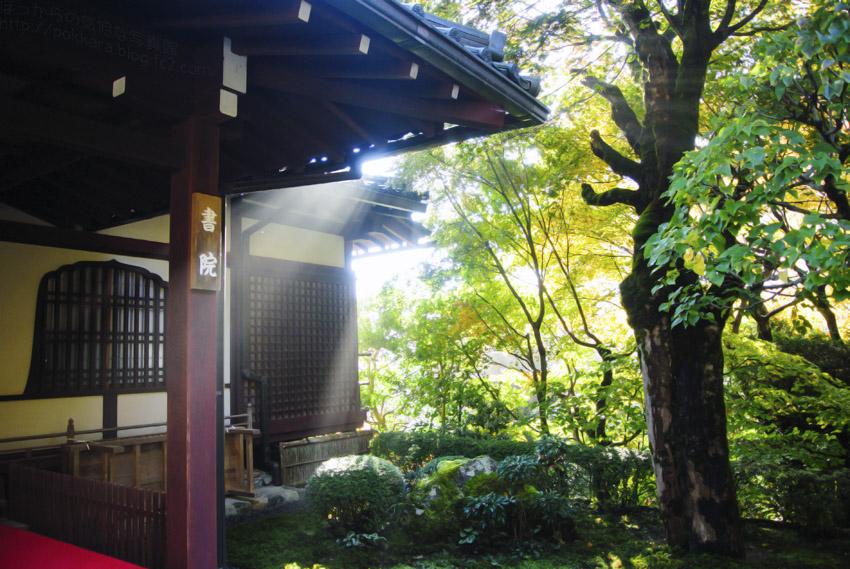 寂光院:朝の光に輝く書院