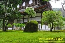 $ぽっからの気侭な写真館-慈照寺の苔と岩