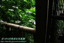 $ぽっからの気侭な写真館-本光寺・東廟所入り口