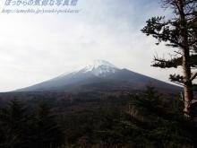 $ぽっからの気侭な写真館-腰切塚から見た富士