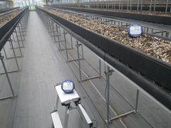 [写真]本圃ハウス内で暖房機を稼働させた後、二酸化炭素濃度を計測している様子