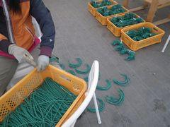 [写真]果房折れ防止用の針金を曲げて作っている様子