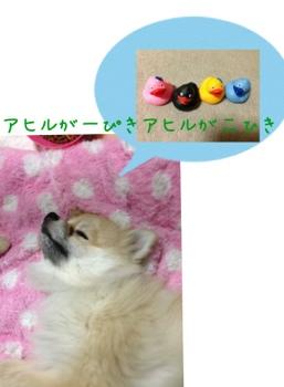fc2blog_201303311459292ef.jpg
