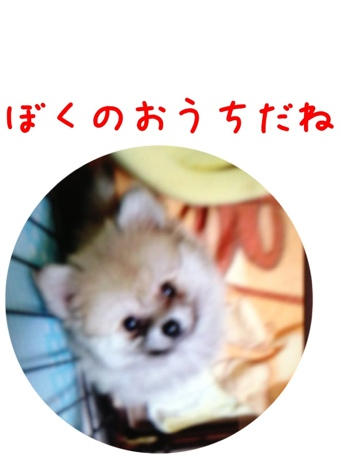 fc2blog_20130417163639304.jpg