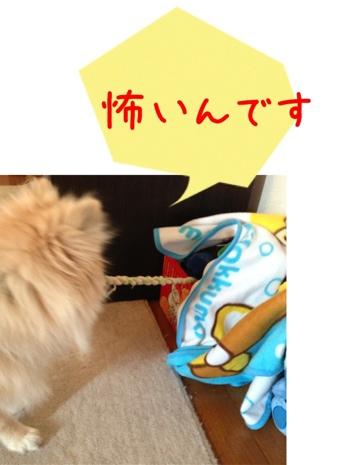 fc2blog_2013051616101656a.jpg