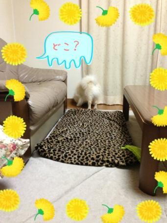 fc2blog_20130523152833577.jpg