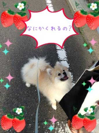 fc2blog_20130602160857b13.jpg