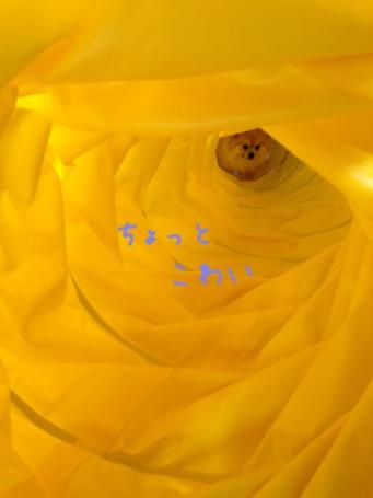fc2blog_20130603173620e45.jpg