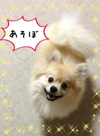 fc2blog_201306072008571db.jpg