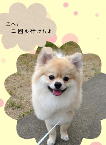 fc2blog_201306122102354c9.jpg