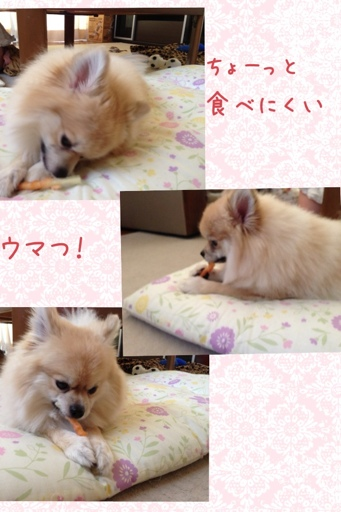 fc2blog_20130627180544e34.jpg