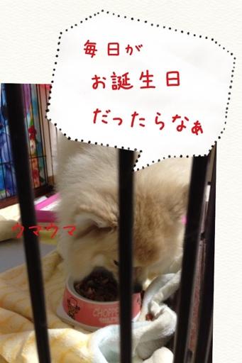 fc2blog_201307042114455ca.jpg