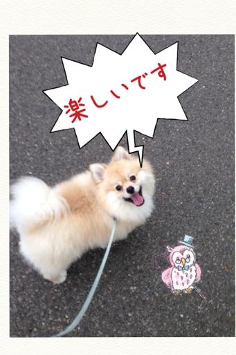 fc2blog_2013070516415439d.jpg