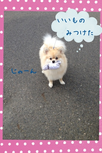 fc2blog_20130712182736f81.jpg