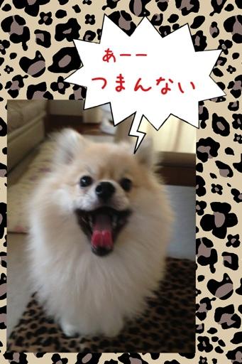 fc2blog_20130725162502e4b.jpg
