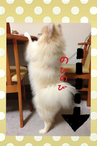 fc2blog_20130730145047c2b.jpg